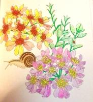 flowerswithsnail.jp
